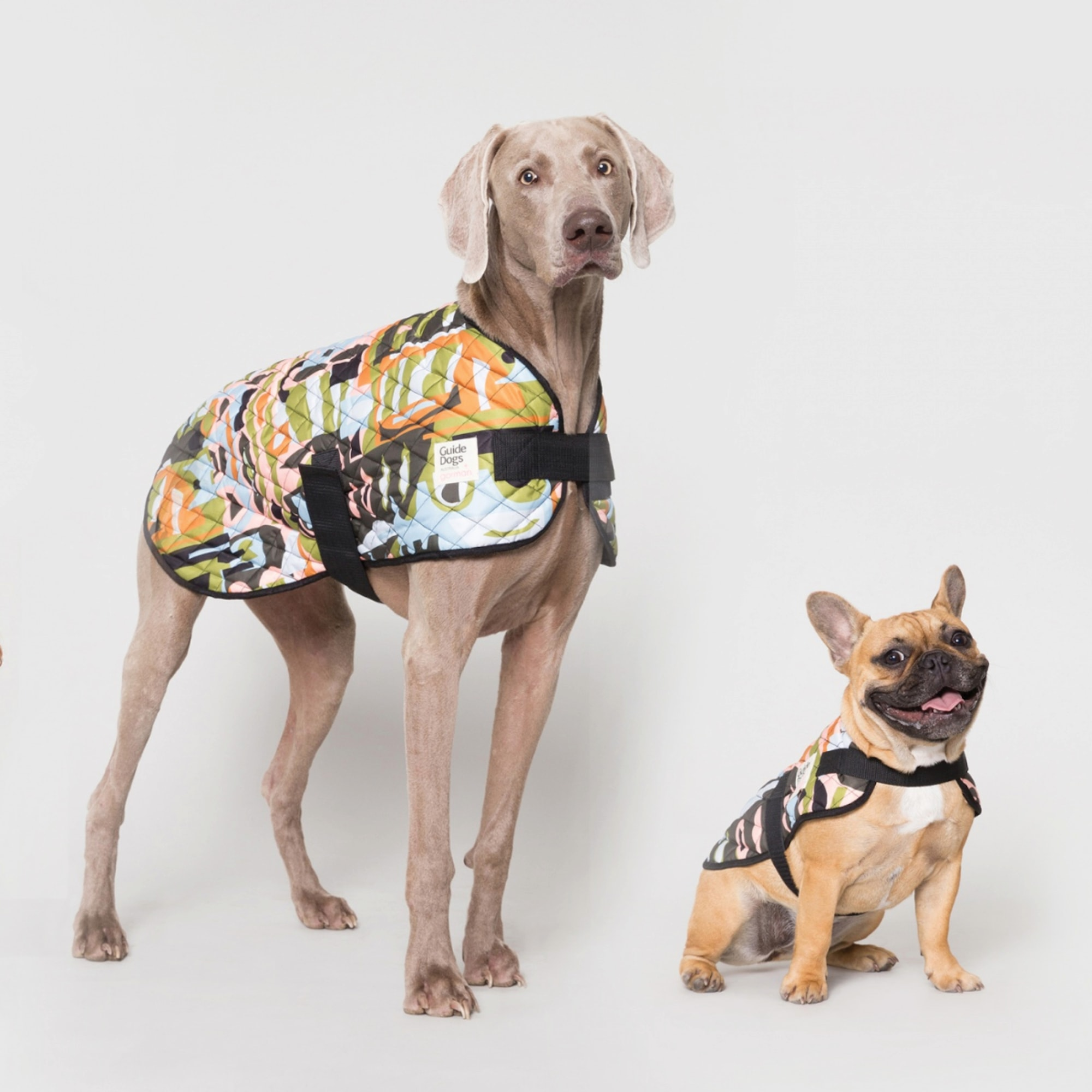 Gorman lent their unique, colourful prints to Guide Dogs Victoria for a charitable range of doggie coats.